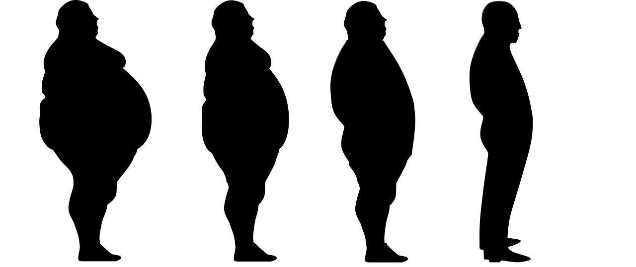 lose weight, fat, slim-1911605.jpg